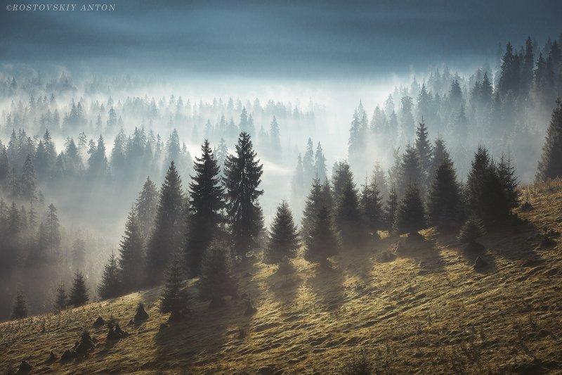 Румыния, Карпаты, фототур, туман, горы, Romania, Утро в Карпатах. Румыния.photo preview