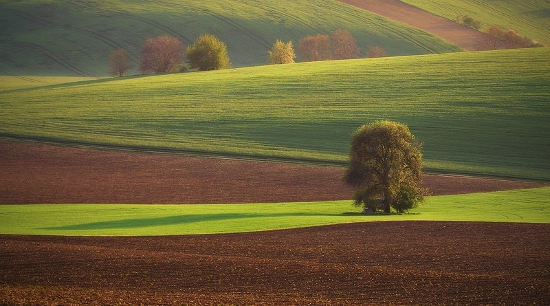 Moravian Tuscanyphoto preview