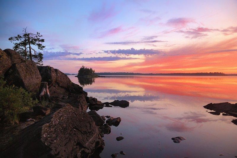 карелия, река, камни, озеро, сосна Озеро Воронье, белые ночиphoto preview
