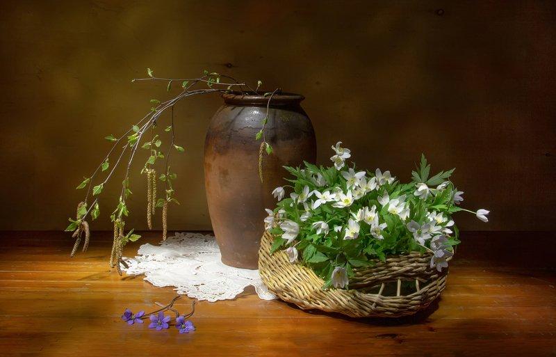 натюрморт, береза, березка, ветреница, пролески Нежность весны.... фото превью