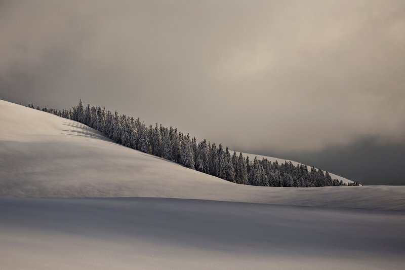 winter, trees, blizzard, snow, landscape, travel, nature, mountain, romania, cold, sunset Oasisphoto preview
