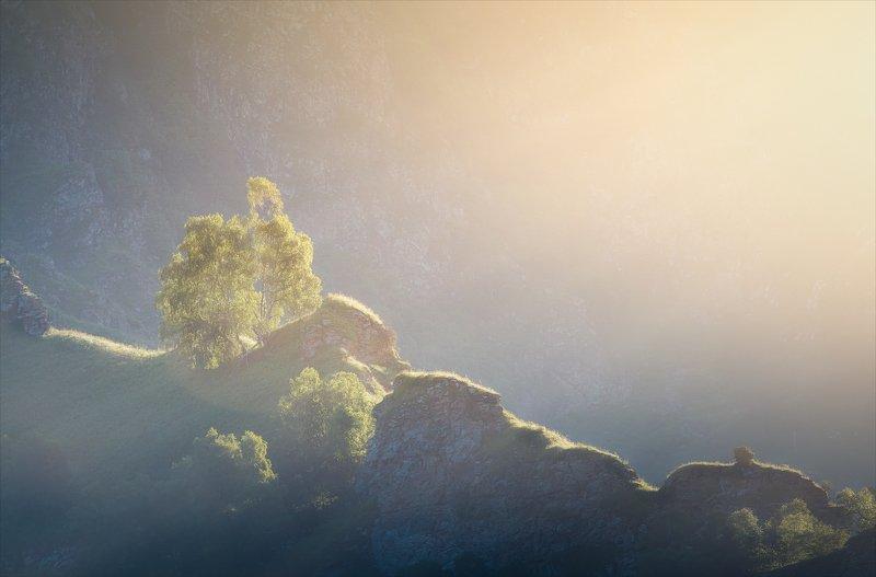 Солнечный душ.photo preview