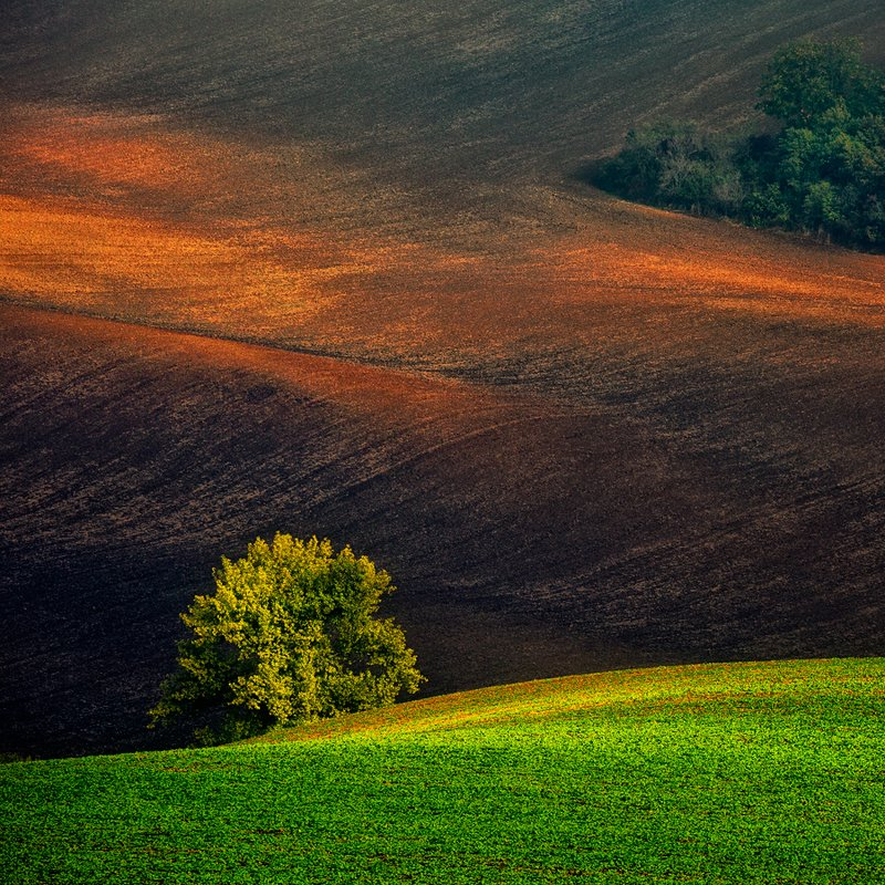 autumn,south moravia,canon,sunset A Landscapephoto preview