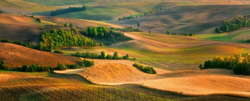 landscape Moravian fieldsphoto preview