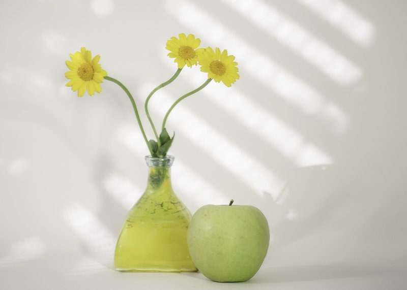 yellow,daisy,stilllife,highkey,flowers yellow daisys.photo preview