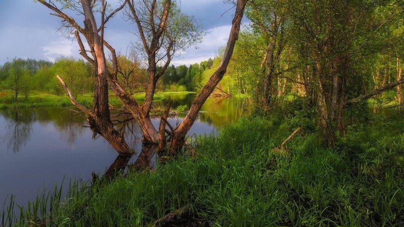 Весна на реке Клеваphoto preview