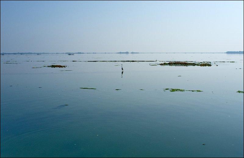 italy, venice, minimal Venice Lagoonphoto preview