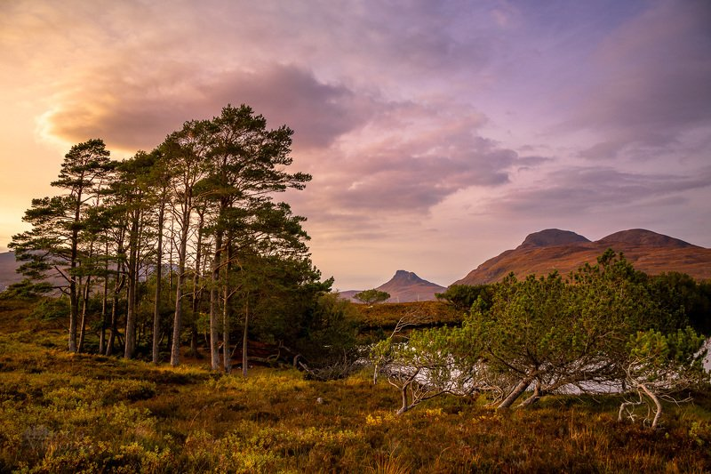 scotland,highlands,mountains,lake,forest,trees,sunset,uk Deep Freeze Mountainsphoto preview