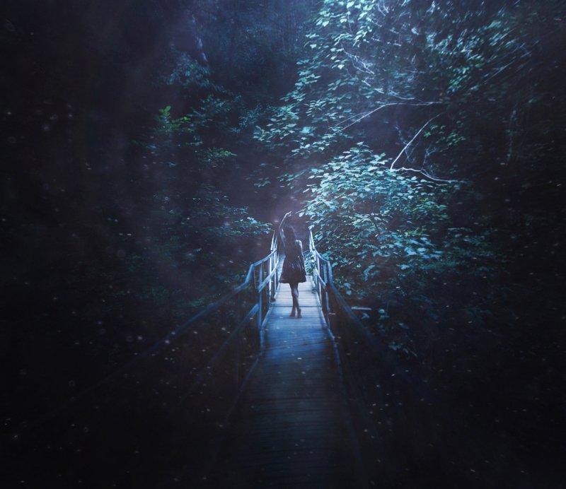 девушка,ночь,свет,арт,природа Белый бисер ночь рассыпетphoto preview