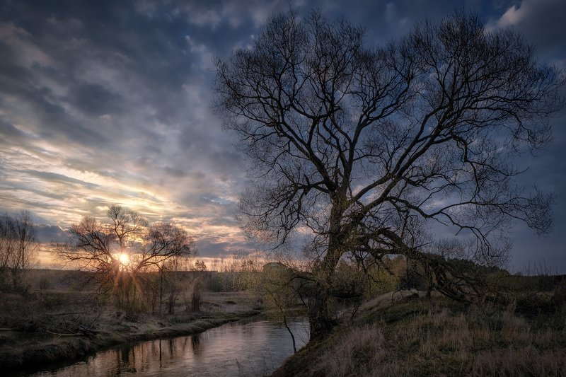 истра, река, пейзаж, рассвет, небо, дерево, туман, утро Пробуждение фото превью