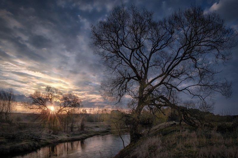 истра, река, пейзаж, рассвет, небо, дерево, туман, утро Пробуждениеphoto preview