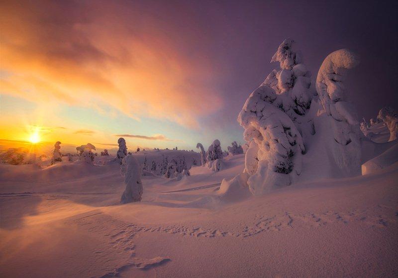 Снежная сказка. фото превью