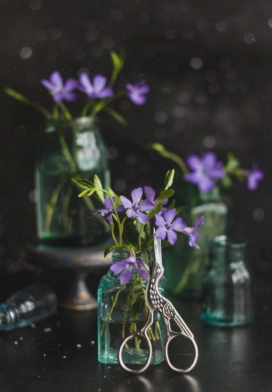 боке, натюрморт, фиолетовый, цветы, бутылка, стекло, красивый, прозрачный, блики, still life Фиолетово-серыйphoto preview