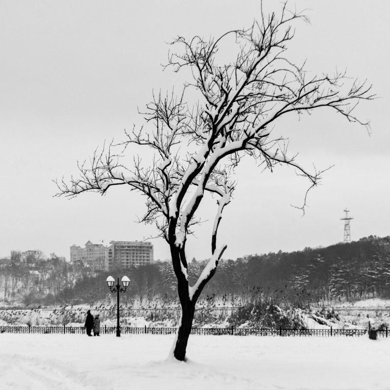 Зимняя зарисовкаphoto preview