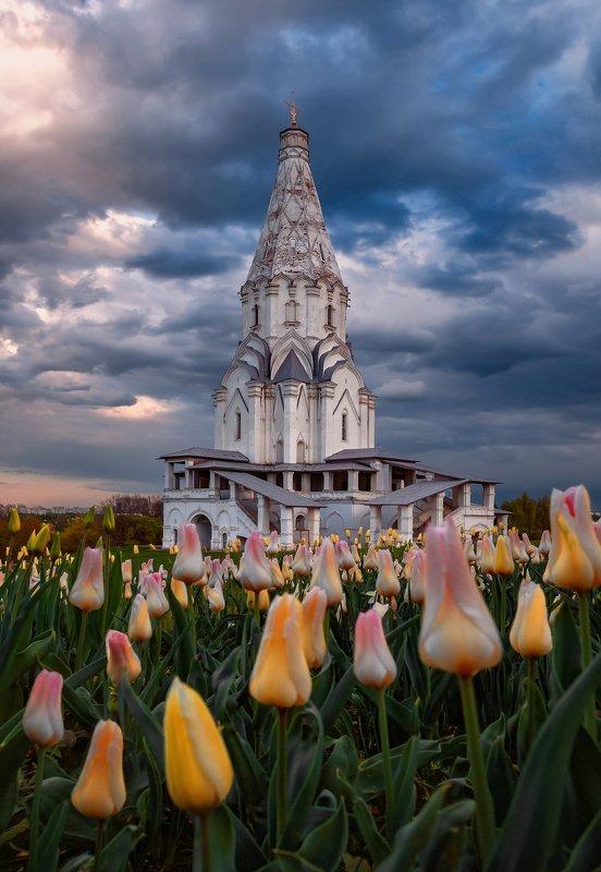 коломенское, весна, москва, тюльпаны, цветы, Коломенскоеphoto preview