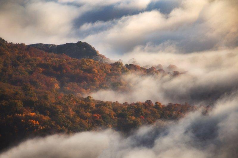 крым, фототуры, осень, пейзаж, туман, роман любимский Туманными берегамиphoto preview
