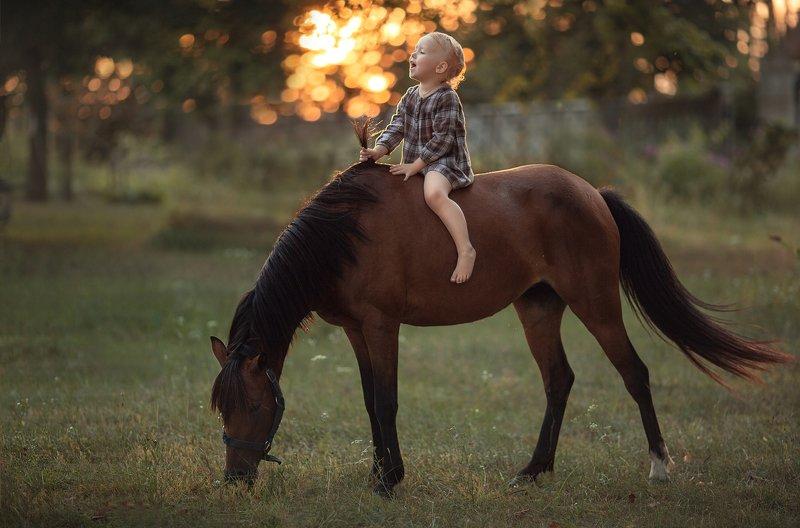 лошадь, закат, девочка Девочка и лошадьphoto preview