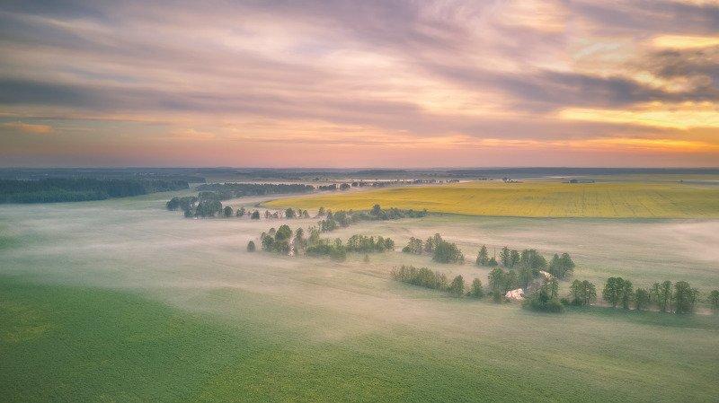 весна, май, минск и окрестности, птичь, рассвет, туман, утро О тишине майского утраphoto preview