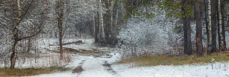 апрель снег лес опушка дорога Апрельский снегphoto preview