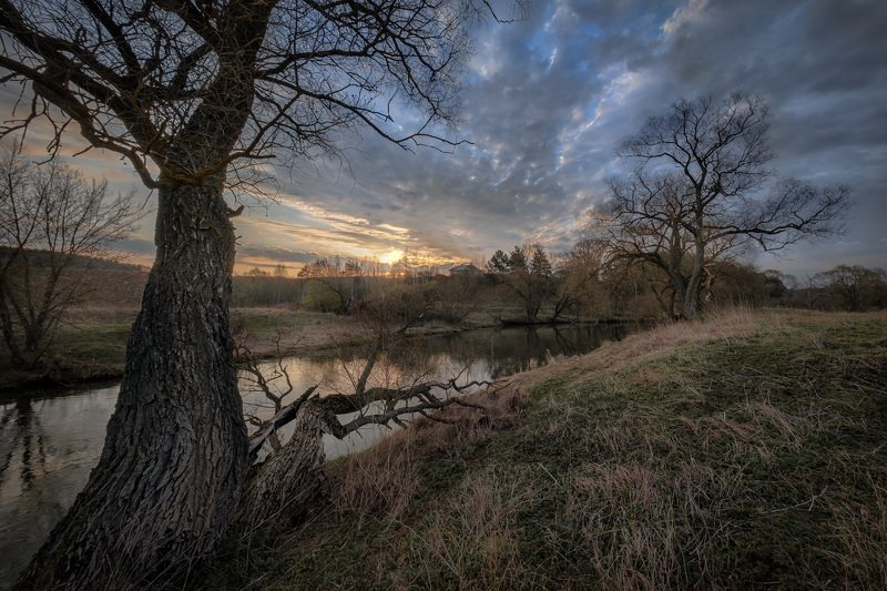 истра, река, деревья, пейзаж, рассвет, небо, весна, утро Кряжистыеphoto preview