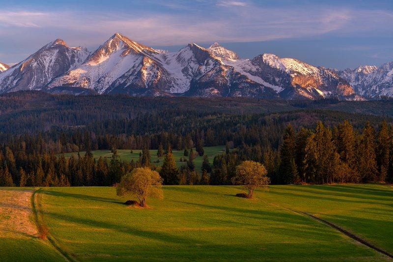 landscape, nature, nikon, scenic, poland, tatry, lights, colors, sunset Łapszankaphoto preview