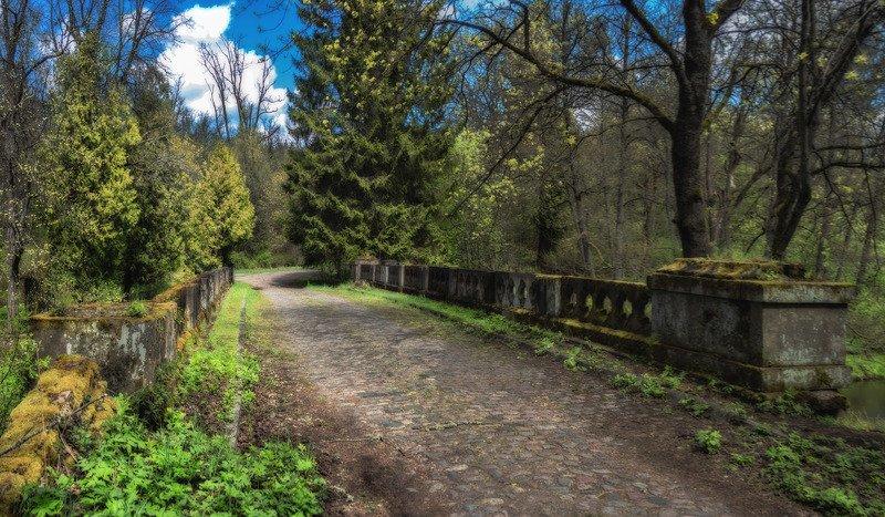 Олений мост.photo preview