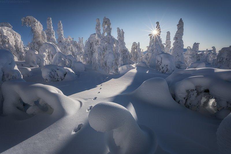 гух, урал, зима, россия, горы, снег, василийяковлев, яковлевфототур В зимней сказке фото превью