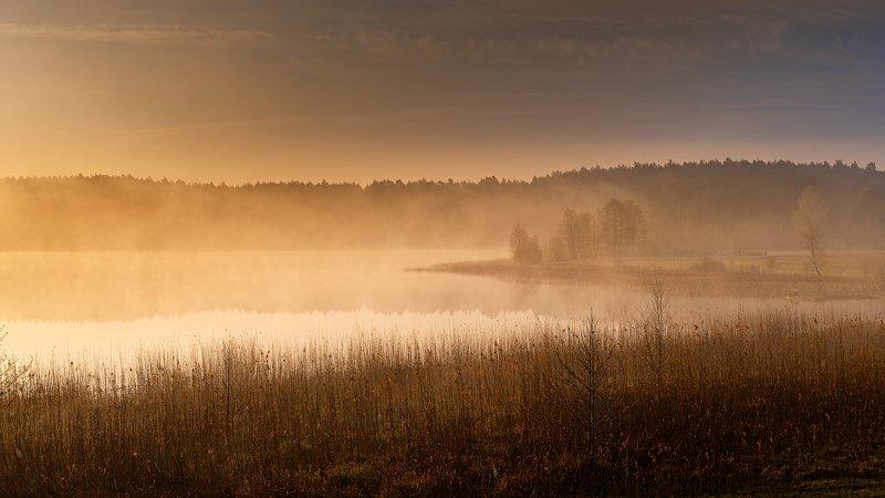 Jezioro Wieckiephoto preview