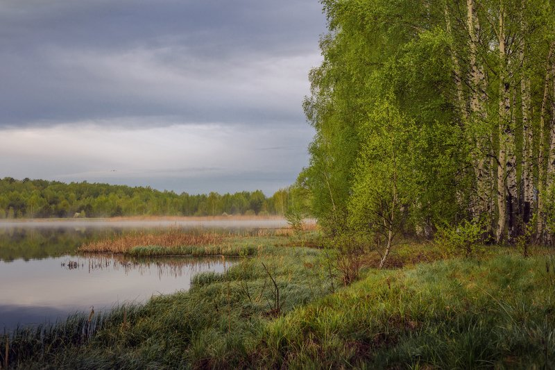 утро туман  б.холм вода состояние Утро, когда плотва нереститсяphoto preview