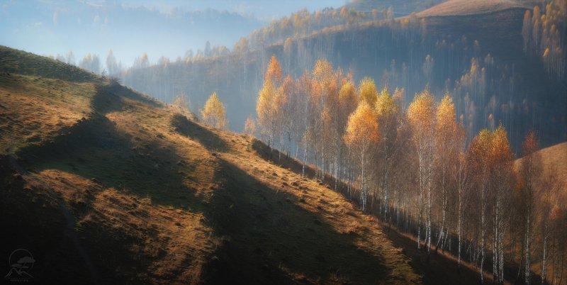 пейзаж, природа, горы, румыния, карпаты Мотивы румынской осениphoto preview