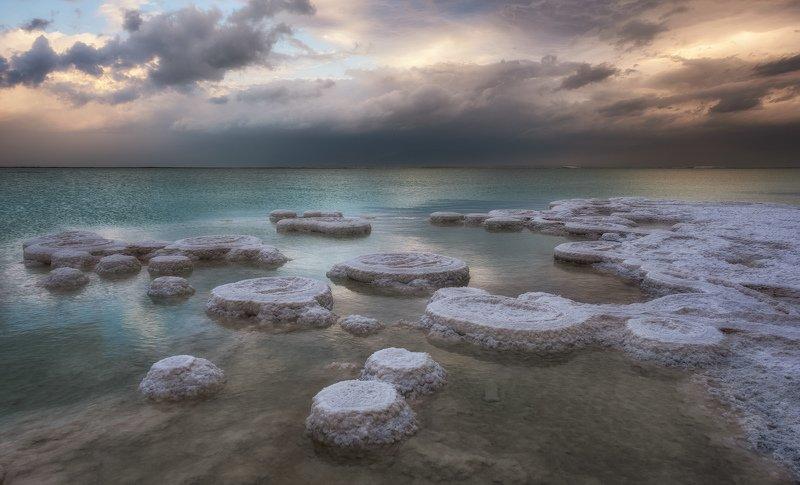 Dead Sea Ringsphoto preview