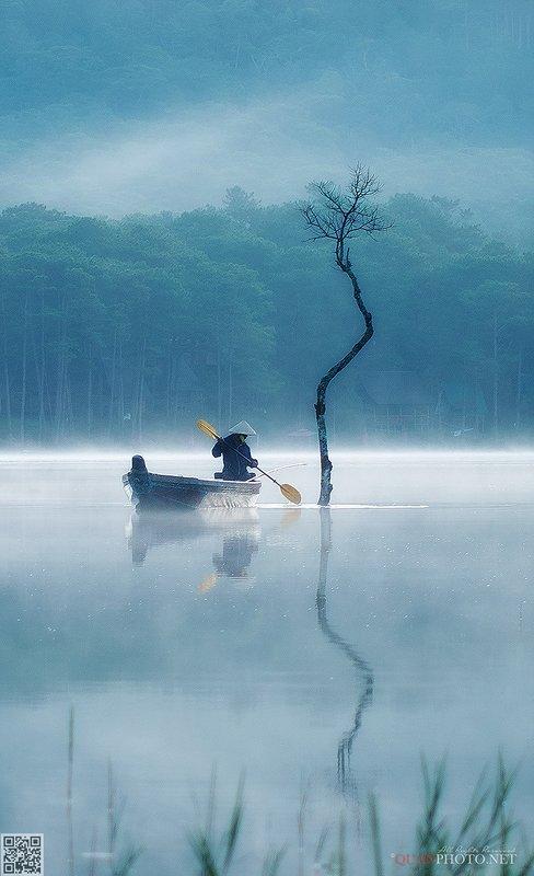 quanphoto, landscapes, morning, reflections, tree, boat, fisherman, misty, lake, plateau, vietnam Misty Morningphoto preview