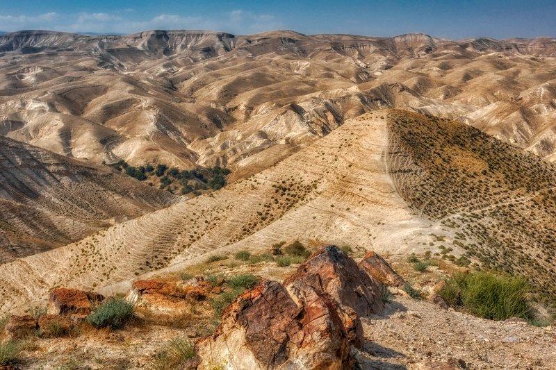 Judaean Desertphoto preview
