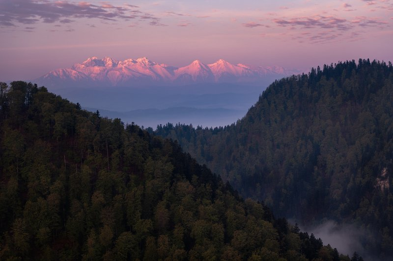 sokolica, mountain, poland, tatras, tatry, trees, nature, landscape Sunrise on Sokolicaphoto preview