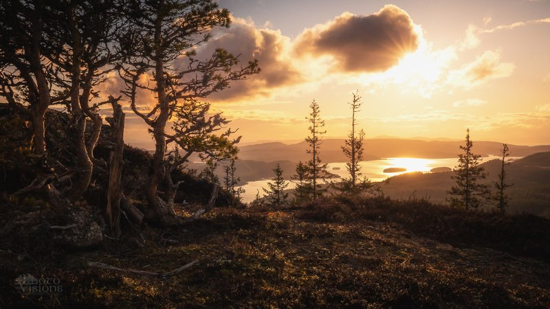 sunset,landscape,forest,mountains,trees,tree,boreal,norway,norwegian,nature, Calming...photo preview