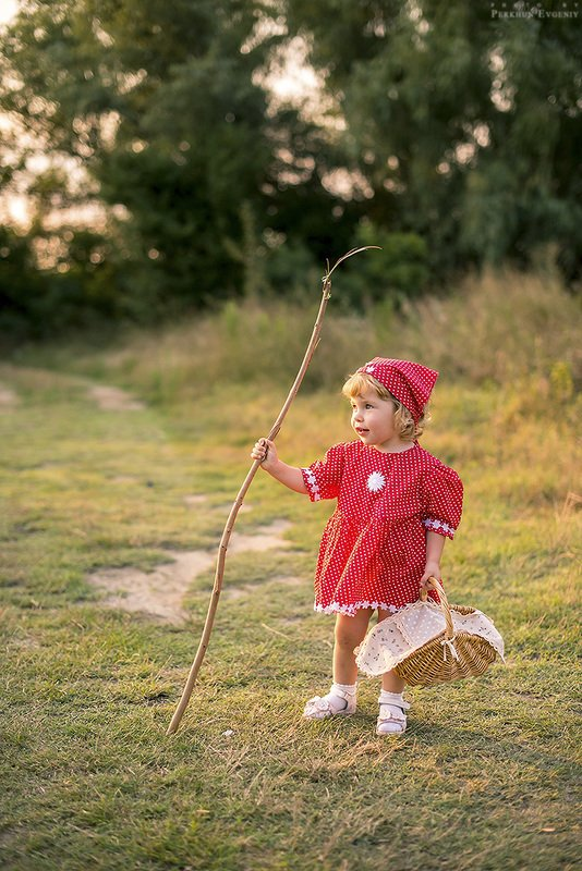 красная шапочка, девочка, волк, пес, собака, серый пес, серый волк, сказка, маргарита, дочка, поляна, лес, корзина, корзинка, история, маленькая девочка История про Красную Шапочкуphoto preview