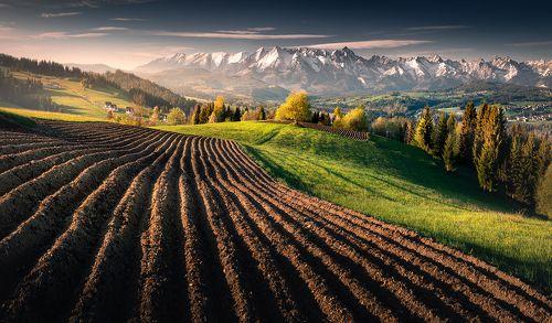 Tatras morning