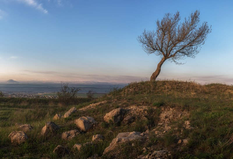 природа, пейзаж, горы, облака, небо, рассвет, утро, дерево, кавказ, кмв, россия, кавминводы, сергейалтушкин Утренние зарисовкиphoto preview