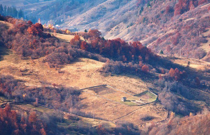 карпаты, осень, утро, свет, лес, огород ...Огород...photo preview