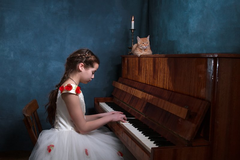 Симфония про кота.photo preview