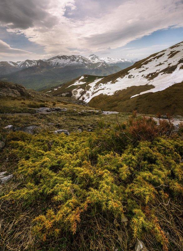 северный кавказ, рожкао, дженту, весна, загедано-урупский. С видом на Загедано-Урупский массивphoto preview