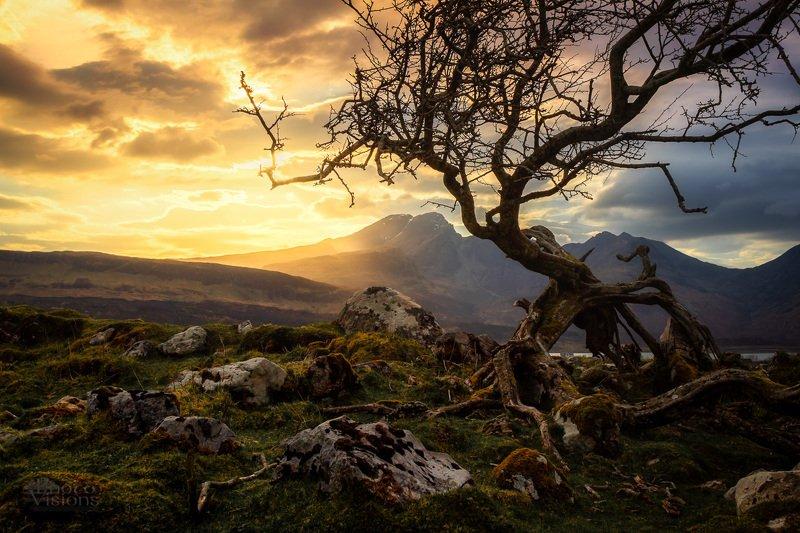 isle of skye,skye,scotland,highlands,sunset,tree,mountains,nature,natural,landscape, Moods of Scotlandphoto preview