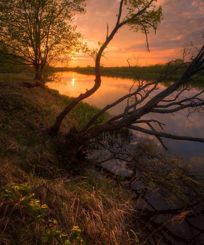 Май 2020. Закат с берега р.Березинаphoto preview