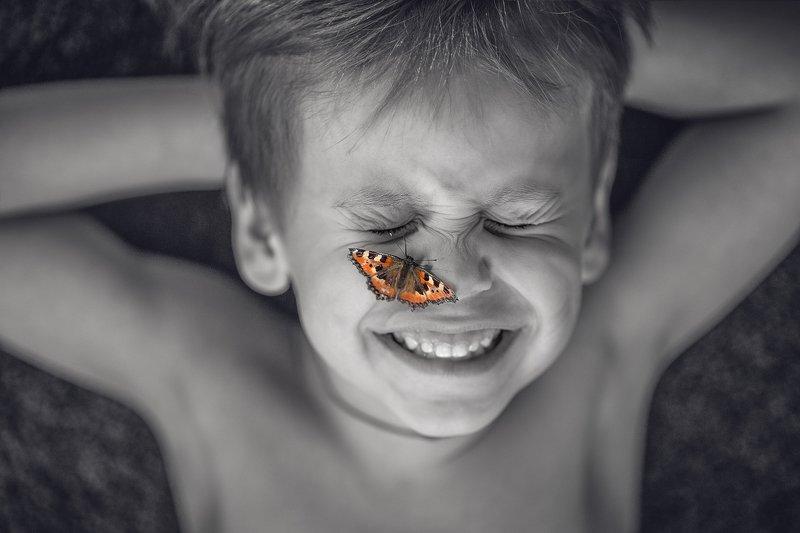 бабочка photo preview