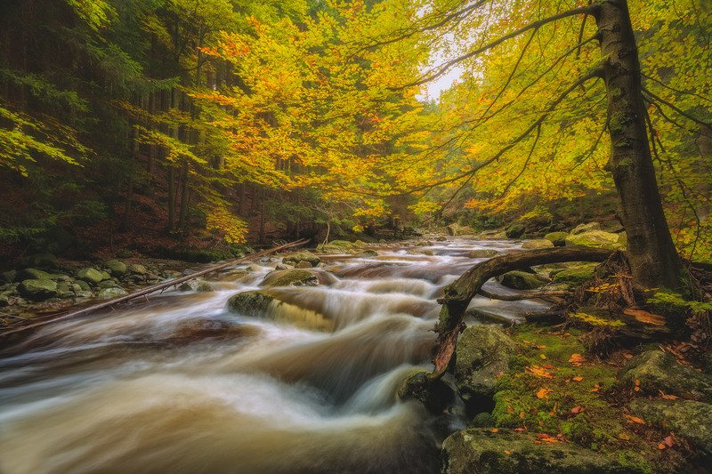 autumn,mountains,canon,waterfall Autumn Song...photo preview