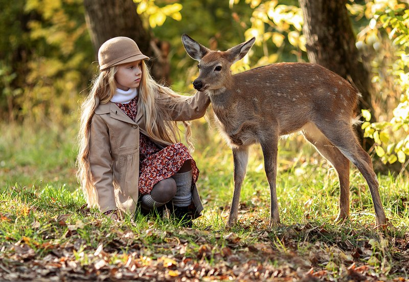 девочка,олененок,бемби,знакомство,встреча,волшебство,лес, children, kids, beautiful,fawn, woodland, nature Волшебное знакомствоphoto preview