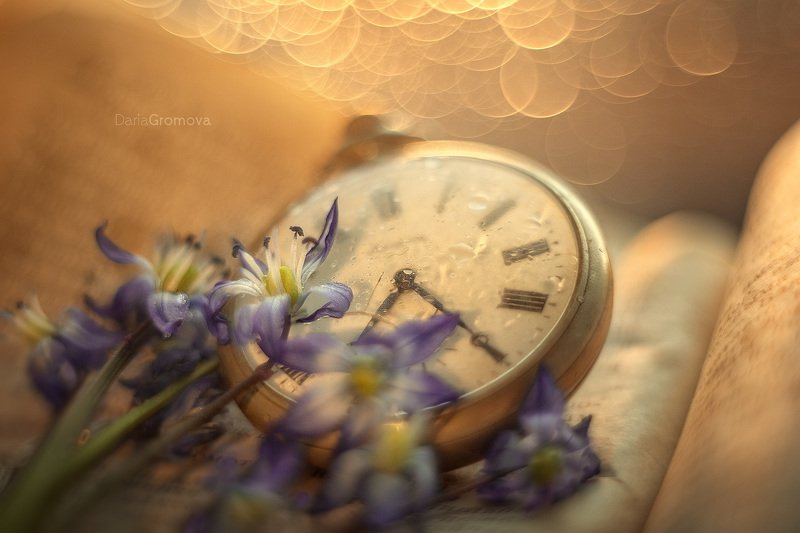 боке, ручной обьектив, мануальная оптика, фотограф, фотосессия, натюрморт, фото, блики, цветы, гелиос, макро, закат, цветы, время, часы, книга Времяphoto preview