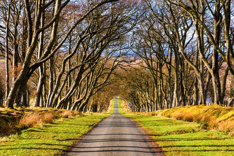 #scotland Country roadphoto preview