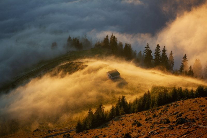 trees, landscape, travel, nature, mountain, romania, cold, sunset, autumn, fog Golden Sunsetphoto preview