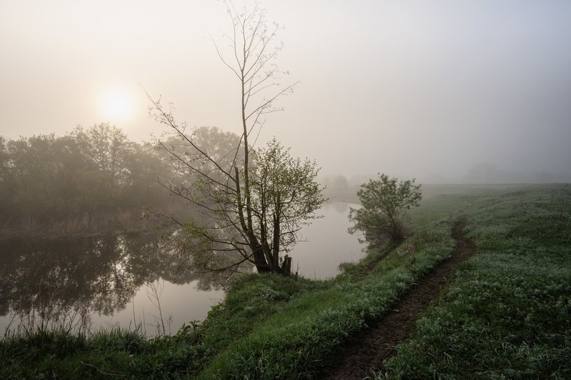 Утро туманное 09.05.2020photo preview